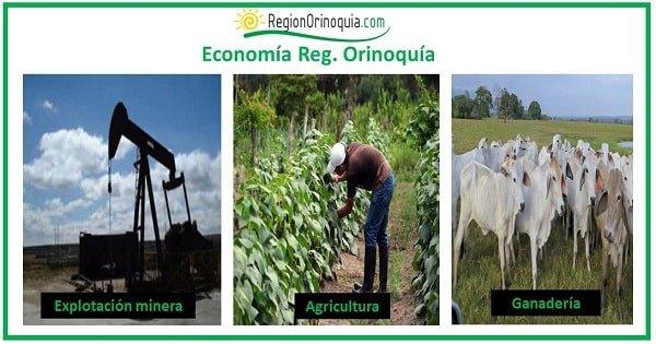 sectores economicos de la region orinoquia
