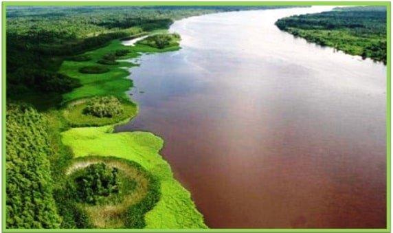 Delta del Rio Orinoco