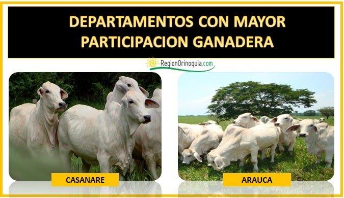 departamentos ganaderos de colombia