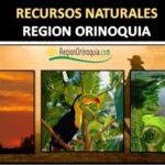 Recursos naturales de la region de la orinoquia colombiana