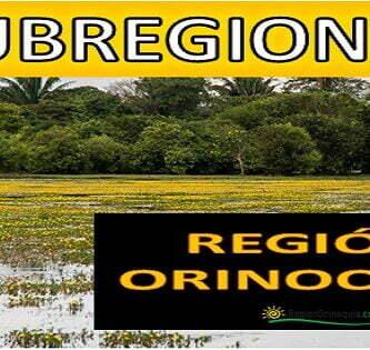 Subregiones de los llanos orientales de Colombia