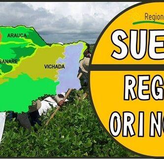 suelos de la region orinoquia