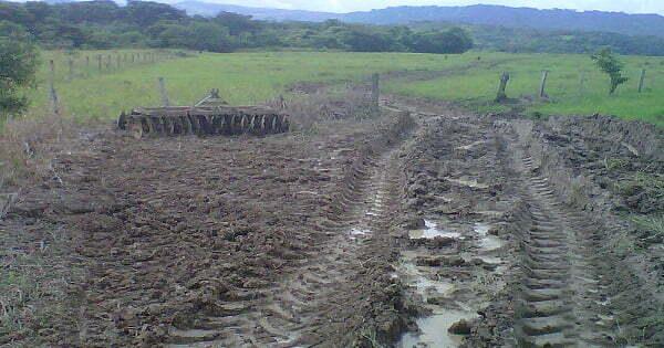 suelos de los llanos orientales