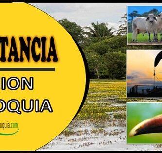 Cual es la importancia de la region Orinoquia en Colombia
